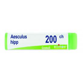 Aesculus Hippocast 200ch Gl